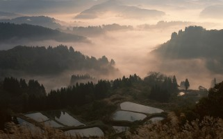 Fog In Japan wallpapers and stock photos