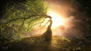 Willow Woman wallpapers and stock photos