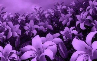 Liliac Flowers wallpapers and stock photos