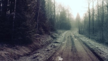 Frozen Forest Road wallpapers and stock photos