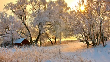 Romanian Winter wallpapers and stock photos