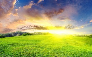 Shiny Sun Over Grass Field wallpapers and stock photos