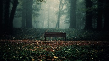 Lonely Bench in Autumn Park wallpapers and stock photos