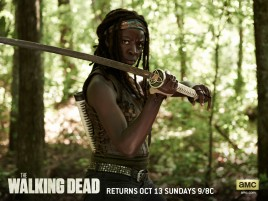Random: The Walking Dead Season 4: Michonne