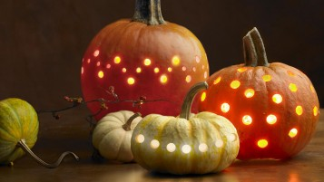 Pumpkins wallpapers and stock photos