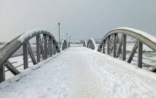 Random: Snow Bridge