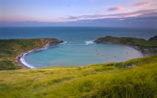 Large Ocean Coast & Grass wallpapers and stock photos