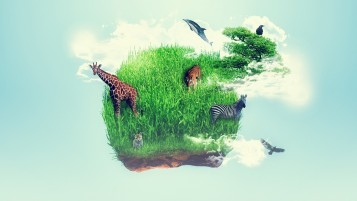 Wild Life & Grass wallpapers and stock photos
