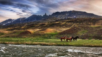 Next: Mountains Fields Horses River
