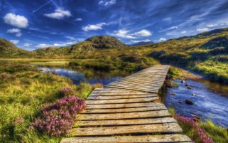 Wooden Bridge Nine wallpapers and stock photos