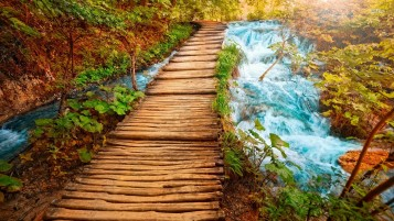 Wooden Bridge Fifteen wallpapers and stock photos