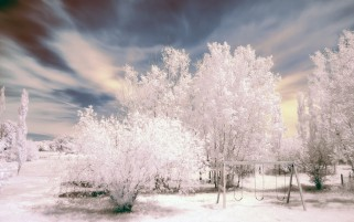 Frosted Sight wallpapers and stock photos