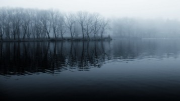 Fog on the Lake wallpapers and stock photos