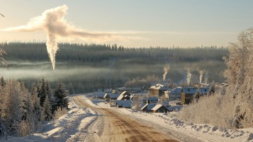 Winter Smoke City Road Trees wallpapers and stock photos