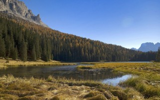 Mountains Forest Grass & Lake wallpapers and stock photos