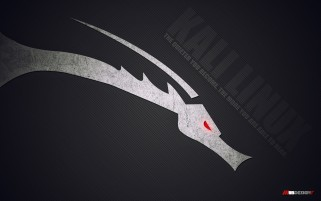 Kali Linux wallpapers and stock photos