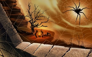 Pumpkins and Spider Webs wallpapers and stock photos