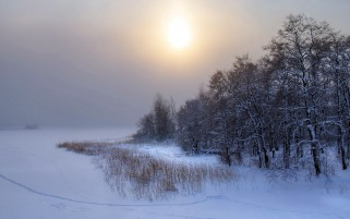 Winter Landscape wallpapers and stock photos