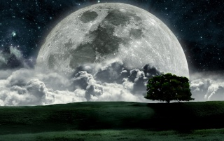 Random: Night Moon Clouds Tree Field