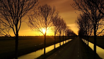 Sunset Trees Field Drive Water wallpapers and stock photos