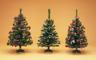 Christmas Trees wallpapers and stock photos