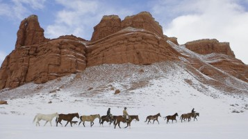 Wyoming Snow Cowboys Horses wallpapers and stock photos