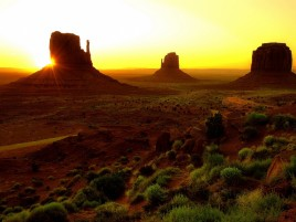 Sun Rocks Desert & Plants wallpapers and stock photos