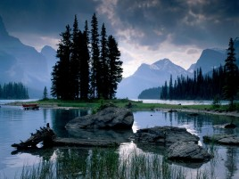Mountains Trees Stone Wood Sea wallpapers and stock photos