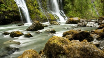 Waterfalls Forest Creek Stones wallpapers and stock photos
