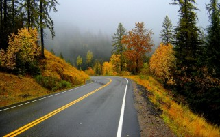 Random: Autumn Scenery & Road