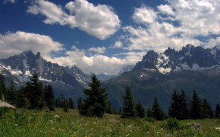 Alpine Clouds Trees & Meadow wallpapers and stock photos