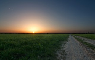 Random: Sun Horizon Grass & Road