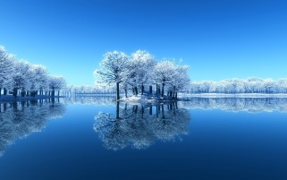Digital Snow Trees & Lake wallpapers and stock photos