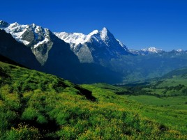 Sky Mountains & Lovely Meadow wallpapers and stock photos