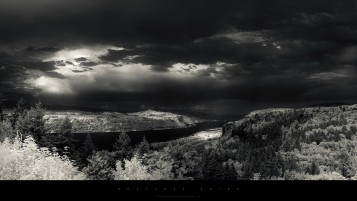 Random: Grayscale River & Forest