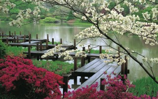 Japanese Garden & Lake wallpapers and stock photos