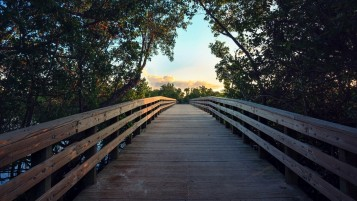 Wooden Bridge Sixteen wallpapers and stock photos