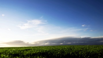 Previous: Clouds Sky & Grass Field