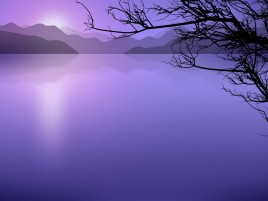 Purple Water & Dark Wood wallpapers and stock photos