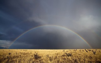 Random: Deep Sky Rainbow & Field
