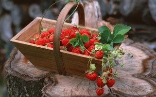 Basket of Berries wallpapers and stock photos