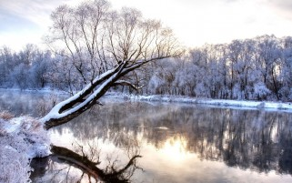 Snow Trees & River wallpapers and stock photos
