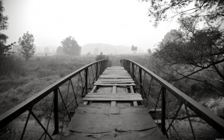 Random: Black & White Bridge Scenery