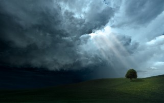 Deep Clouds Rays Tree & Field wallpapers and stock photos