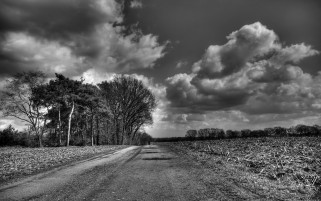 Random: Gray Road Fields Trees Clouds