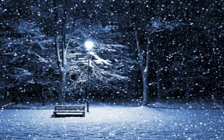 Bench in Snowy Park wallpapers and stock photos