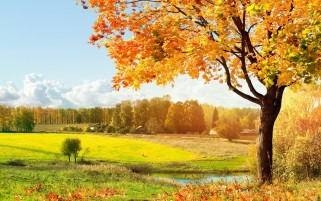 Autumn Glamour Fields & Sea wallpapers and stock photos