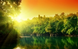 Sun Light Trees & Lake wallpapers and stock photos