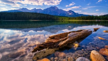 Mountain Forest Sea Wood Stone wallpapers and stock photos