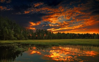 Random: Forest Grass Sunset Reflection